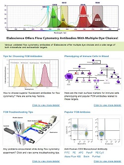 Issue 23,Flow Cytometry Antibodies